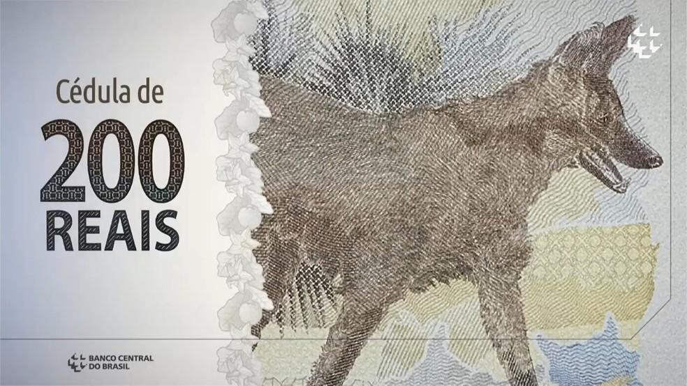 Nota de R$ 200 é apresentada pelo Banco Central — Foto: Reprodução / BC