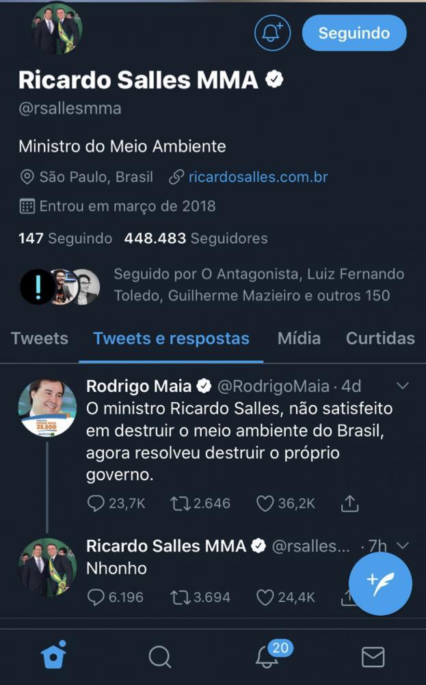 Ministro do Meio Ambiente chama presidente da Câmara, Rodrigo Maia, de 'Nhonho', personagem da série Chaves — Foto: Reprodução/Twitter