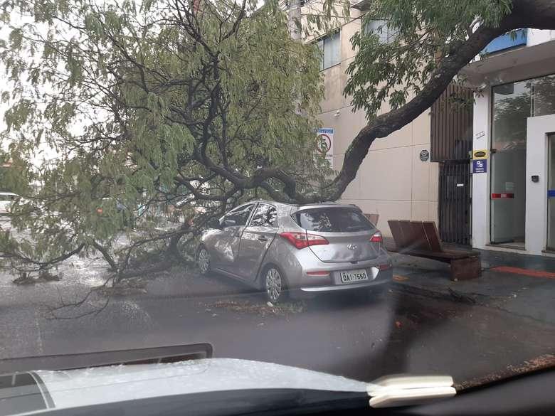 Dourados teve chuva com rastro de destruição neste domingo(08) Foto: Defesa Civil